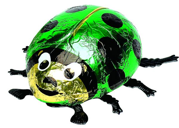 Giant Chocolate Ladybird (Green) 45g x 12