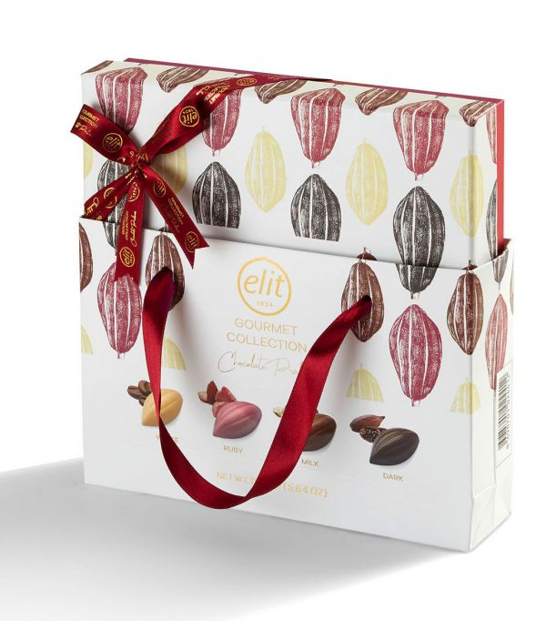 Gourmet Collection Chocolate Praline (Dark, Milk, White and Ruby Chocolate) (with bag) 160g x 10